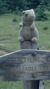 On the Skyline Trail