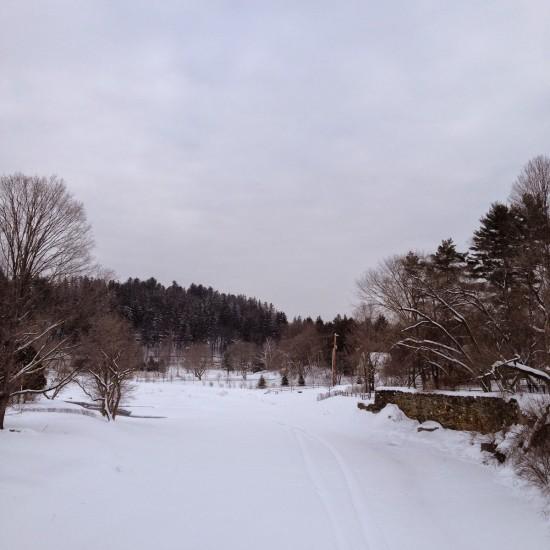 O River 2-12-15 9.30 am