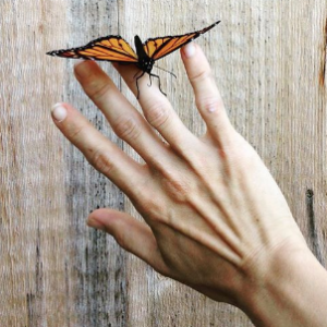 Amanda's hand with butterfly